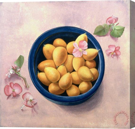 Tomar Levine Kumquats And Blossoms Stretched Canvas Print / Canvas Art
