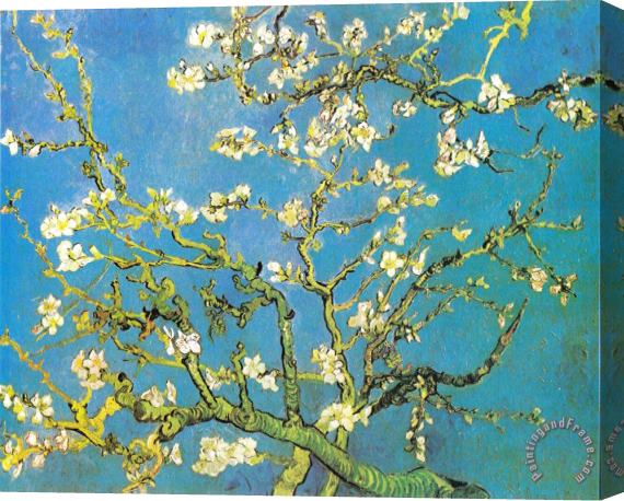 Vincent van Gogh Blossoming Almond-branches Stretched Canvas Print / Canvas Art