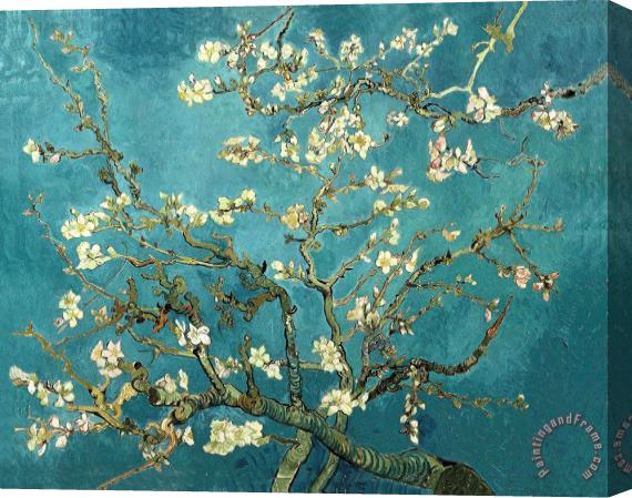 Vincent van Gogh Blossoming Almond Tree Stretched Canvas Print / Canvas Art