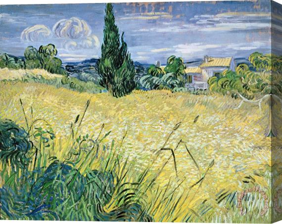 Vincent Van Gogh Landscape with Green Corn Stretched Canvas Print / Canvas Art