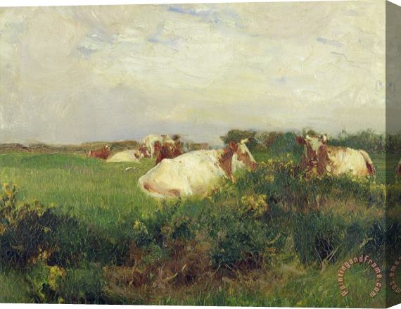 Walter Frederick Osborne Cows in Field Stretched Canvas Print / Canvas Art