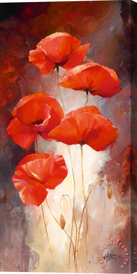 willem haenraets Poppy Bouquet I Stretched Canvas Painting / Canvas Art