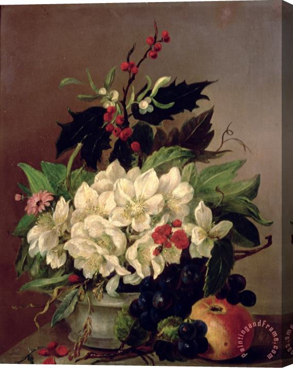 Willem van Leen Christmas Roses Stretched Canvas Print / Canvas Art