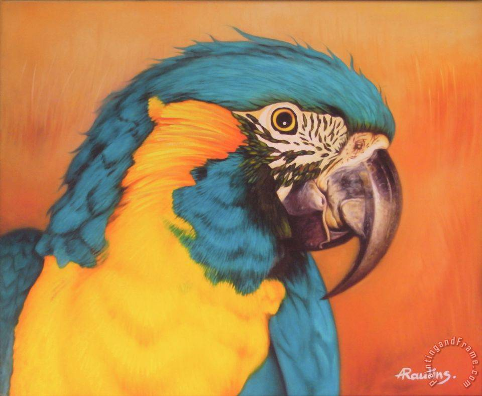 Painting Blue And Yellow Blue-and-yellow Macaw Painting