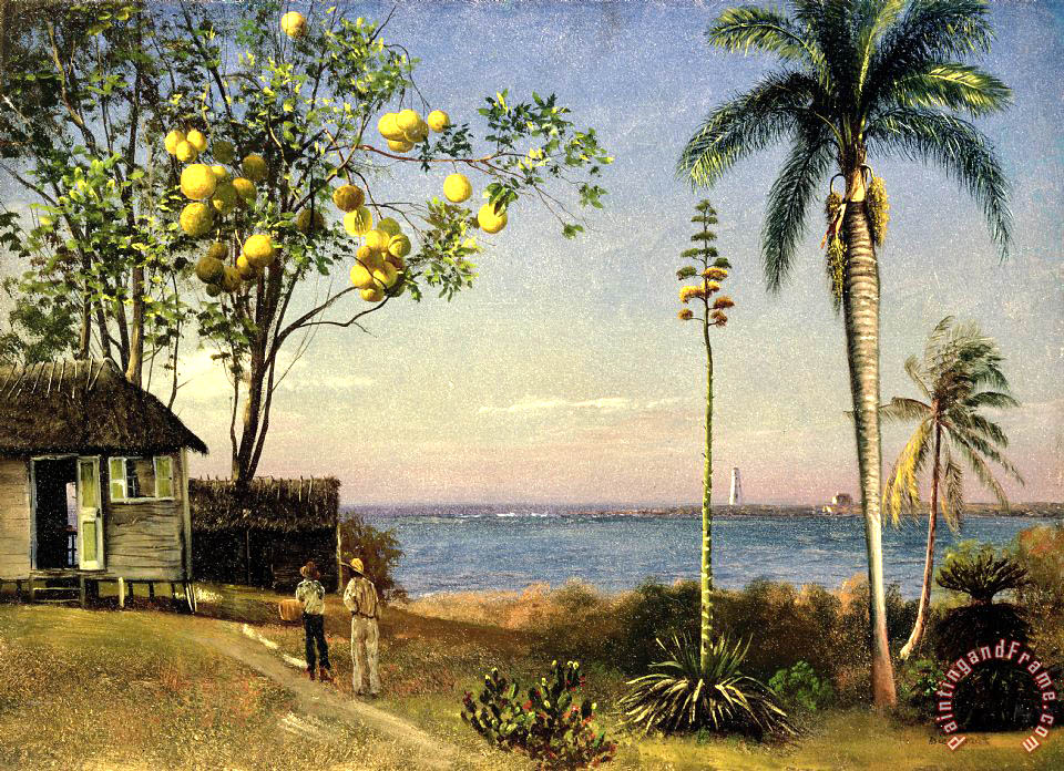 Albert Bierstadt Tropical Scene Art Print