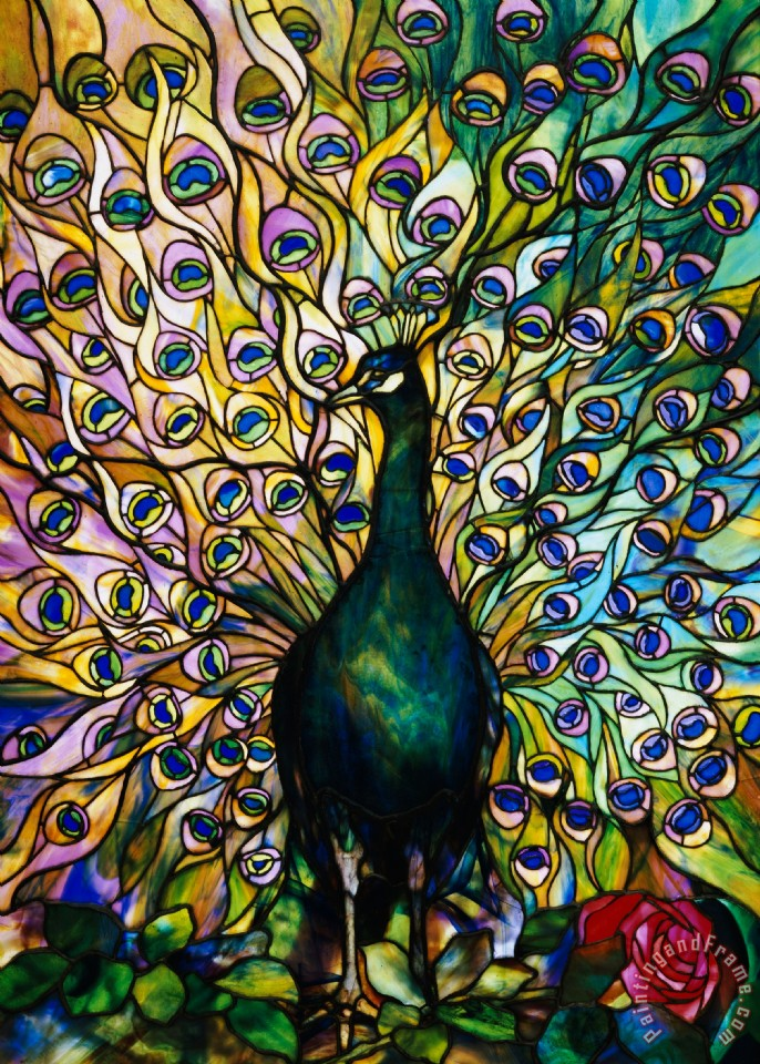 American School Peacock Art Print