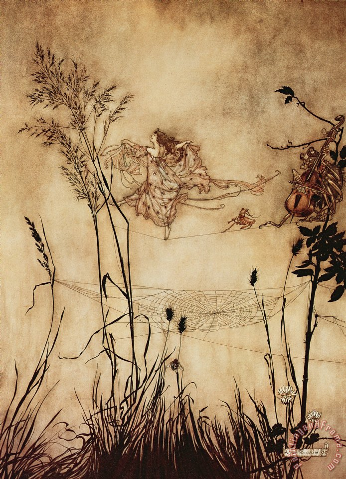 The Fairy's Tightrope from Peter Pan in Kensington Gardens painting - Arthur Rackham The Fairy's Tightrope from Peter Pan in Kensington Gardens Art Print