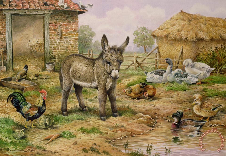 Donkey and Farmyard Fowl painting - Carl Donner Donkey and Farmyard Fowl Art Print