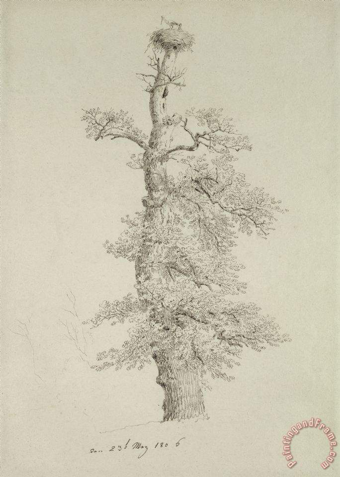 Ancient Oak Tree With A Storks Nest painting - Caspar David Friedrich Ancient Oak Tree With A Storks Nest Art Print