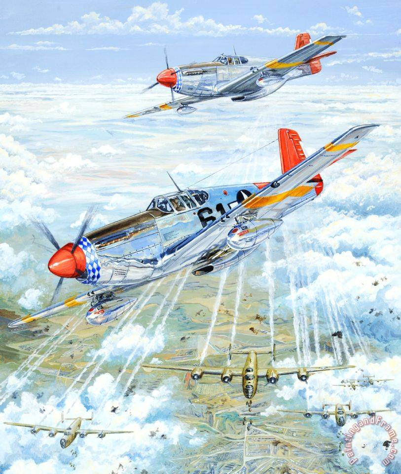 Red Tail 61 painting - Charles Taylor Red Tail 61 Art Print