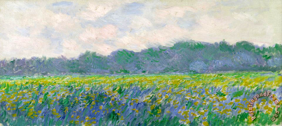 Field of Yellow Irises at Giverny painting - Claude Monet Field of Yellow Irises at Giverny Art Print
