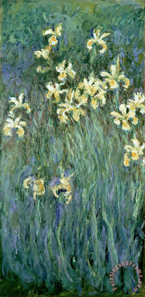 The Yellow Irises painting - Claude Monet The Yellow Irises Art Print