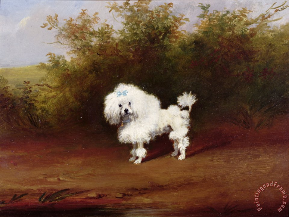 A Toy Poodle in a Landscape painting - Frederick French A Toy Poodle in a Landscape Art Print
