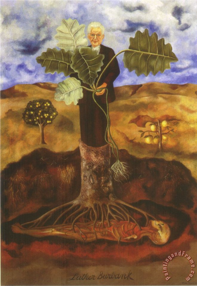 Frida Kahlo Portrait Of Luther Burbank 1931 Painting