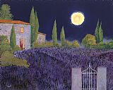 Lavanda Di Notte by Collection 7