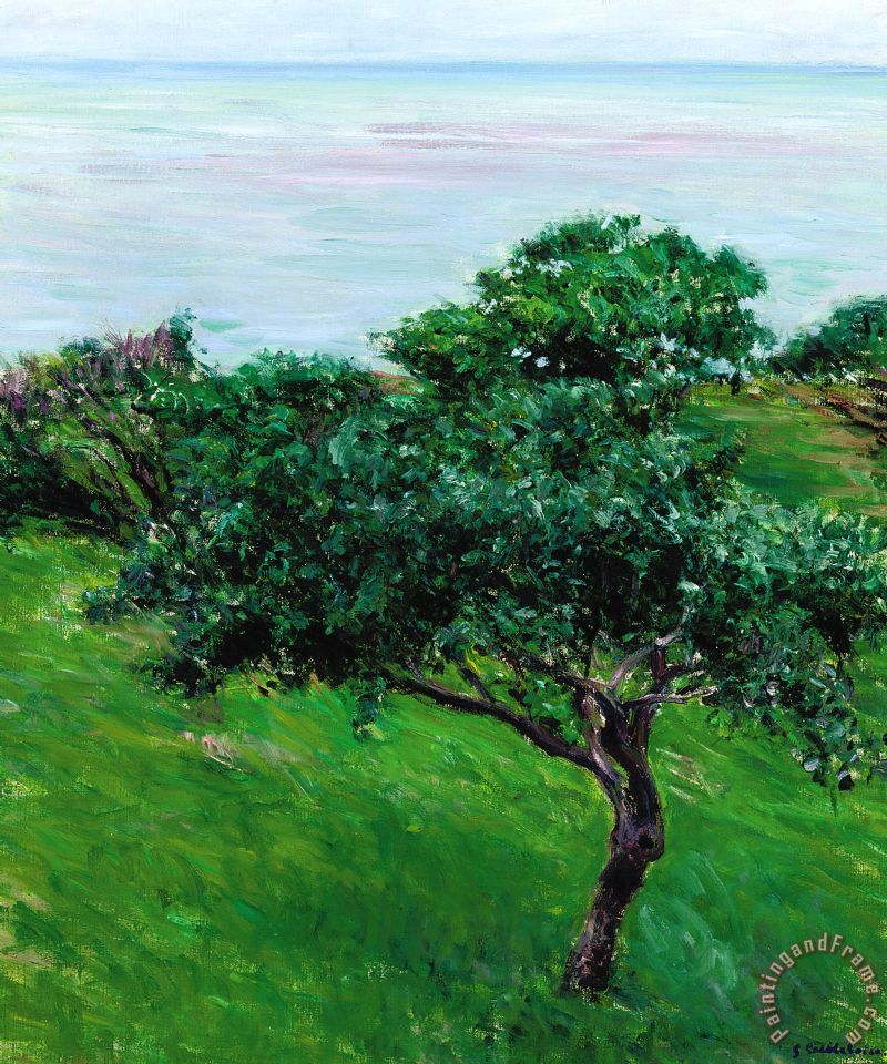 Gustave Caillebotte Apple Trees By The Sea Trouville Art Print