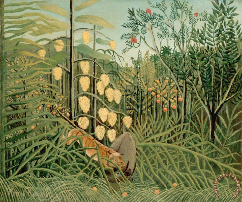 Rousseau, Henri in a Tropical Forest. Struggle Between Tiger And Bull painting - Henri Rousseau Rousseau, Henri in a Tropical Forest. Struggle Between Tiger And Bull Art Print