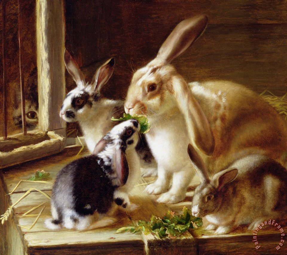 Long-eared Rabbits In A Cage Watched By A Cat painting - Horatio Henry Couldery Long-eared Rabbits In A Cage Watched By A Cat Art Print