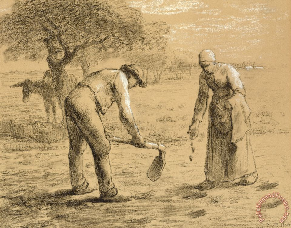 Peasants Planting Potatoes painting - Jean-Francois Millet Peasants Planting Potatoes Art Print