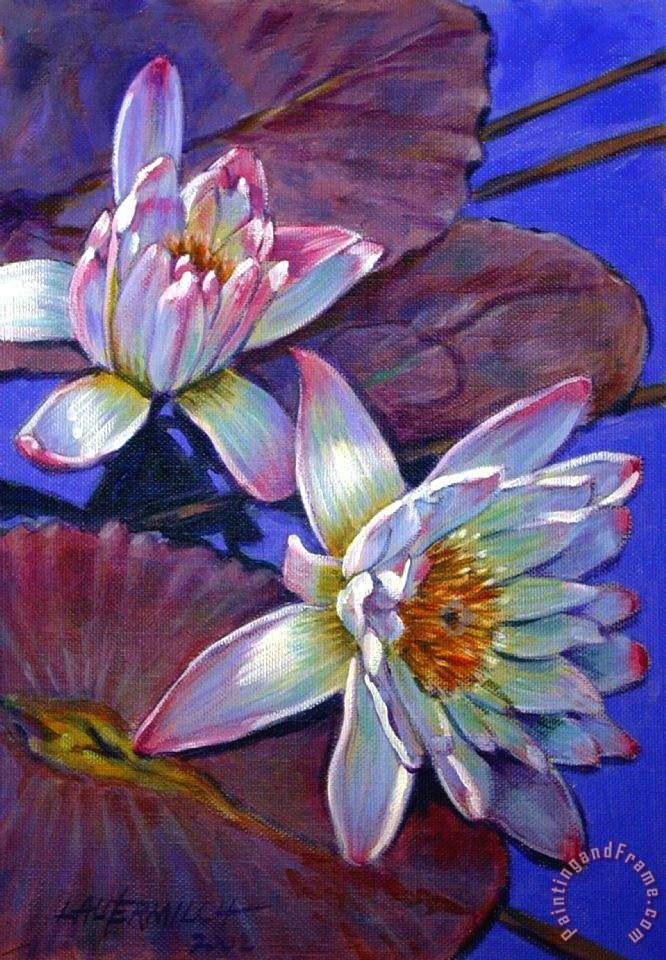 Two Pink Water Lilies painting - John Lautermilch Two Pink Water Lilies Art Print