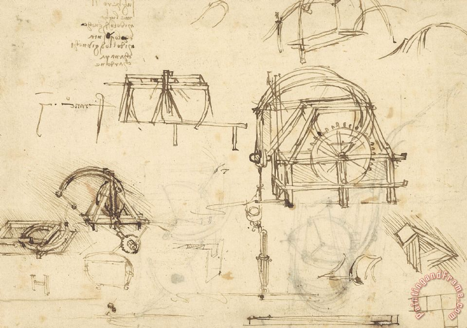 Drawings Of Geometric Figures List Of Botanical Terms Sketches Of Construction Of Onager painting - Leonardo da Vinci Drawings Of Geometric Figures List Of Botanical Terms Sketches Of Construction Of Onager Art Print