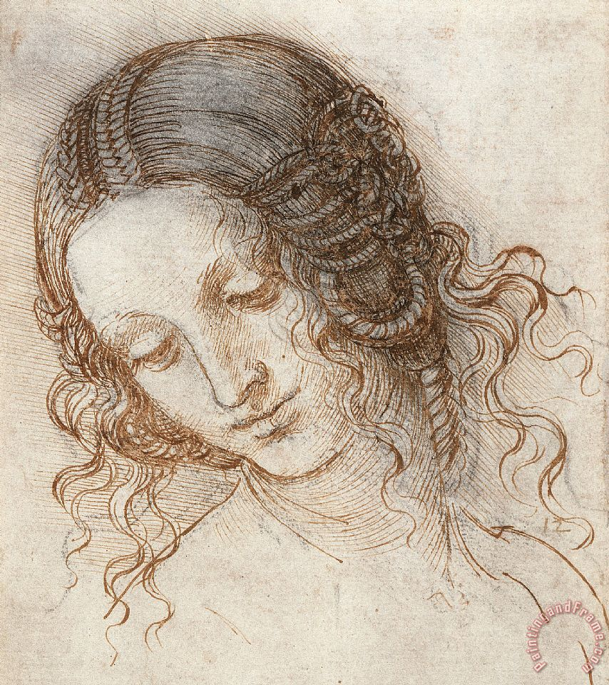 Leonardo Head Of Woman Drawing painting - Leonardo da Vinci Leonardo Head Of Woman Drawing Art Print