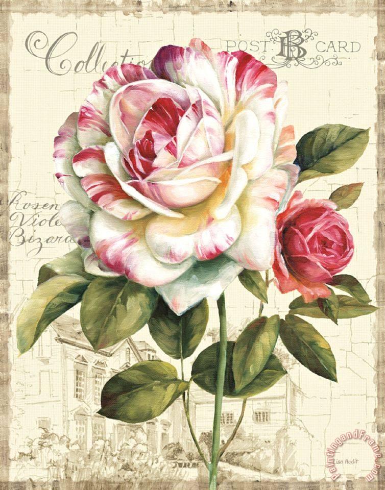 Lisa rose artwork