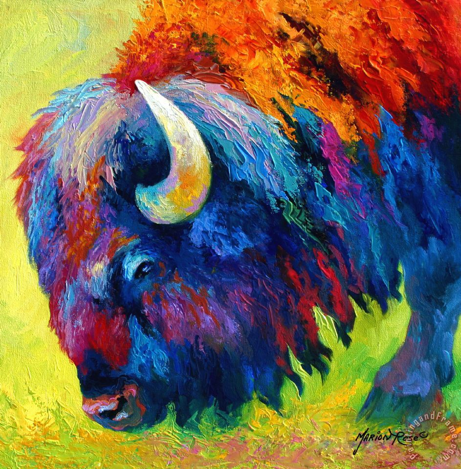 Bison Portrait II painting - Marion Rose Bison Portrait II Art Print