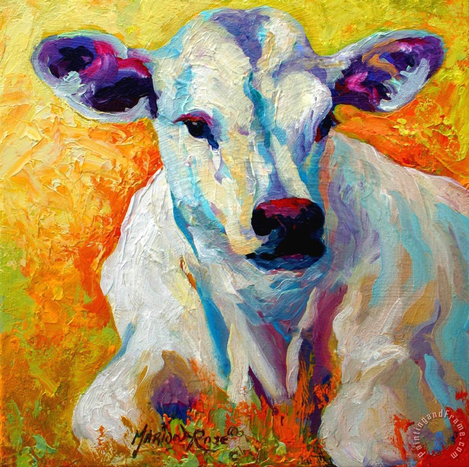 White Calf painting - Marion Rose White Calf Art Print