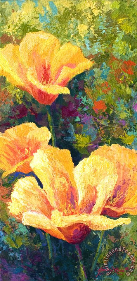 Yellow Field poppies painting - Marion Rose Yellow Field poppies Art Print