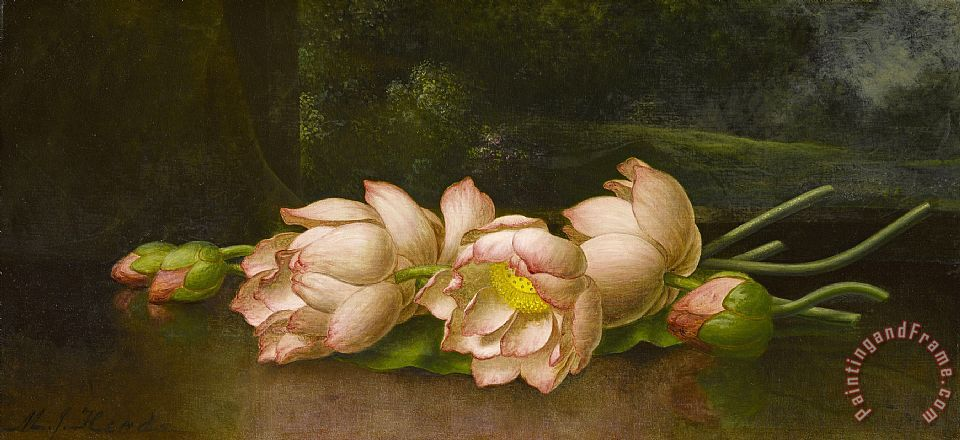 Lotus Flowers a Landscape Painting in The Background painting - Martin Johnson Heade Lotus Flowers a Landscape Painting in The Background Art Print