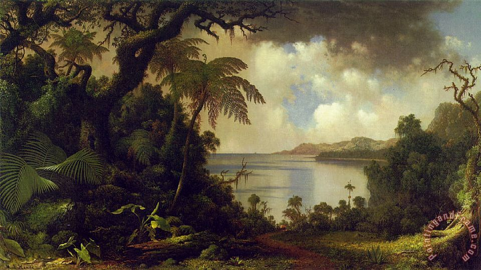 Martin Johnson Heade View From Fern Tree Walk, Jamaica Art Print