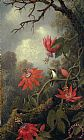 hummingbird and passion flowers by Martin Johnson Heade