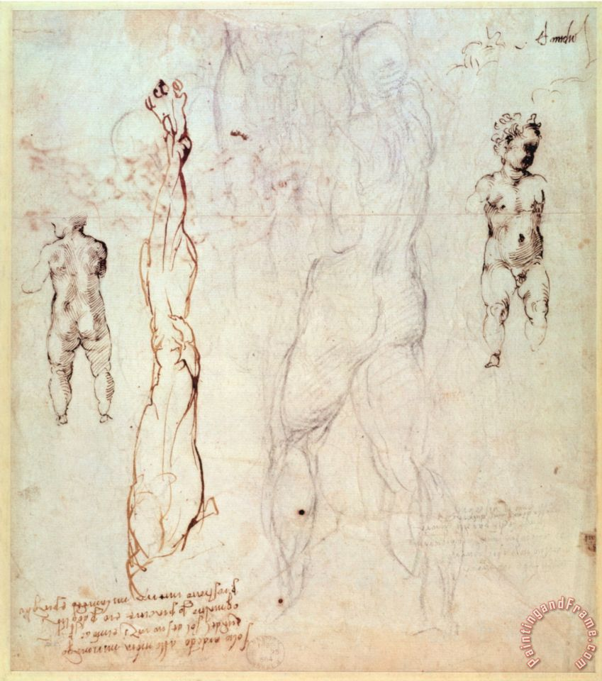 Michelangelo Buonarroti Anatomical Drawings with Accompanying Notes ...