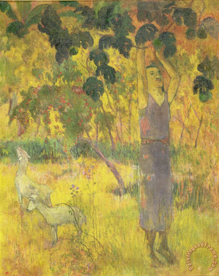 Picking Fruit from a Tree painting - Paul Gauguin Picking Fruit from a Tree Art Print