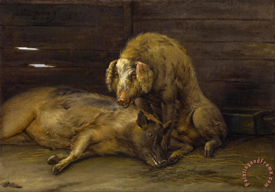Paulus Potter Two Pigs In A Sty Painting Two Pigs In A