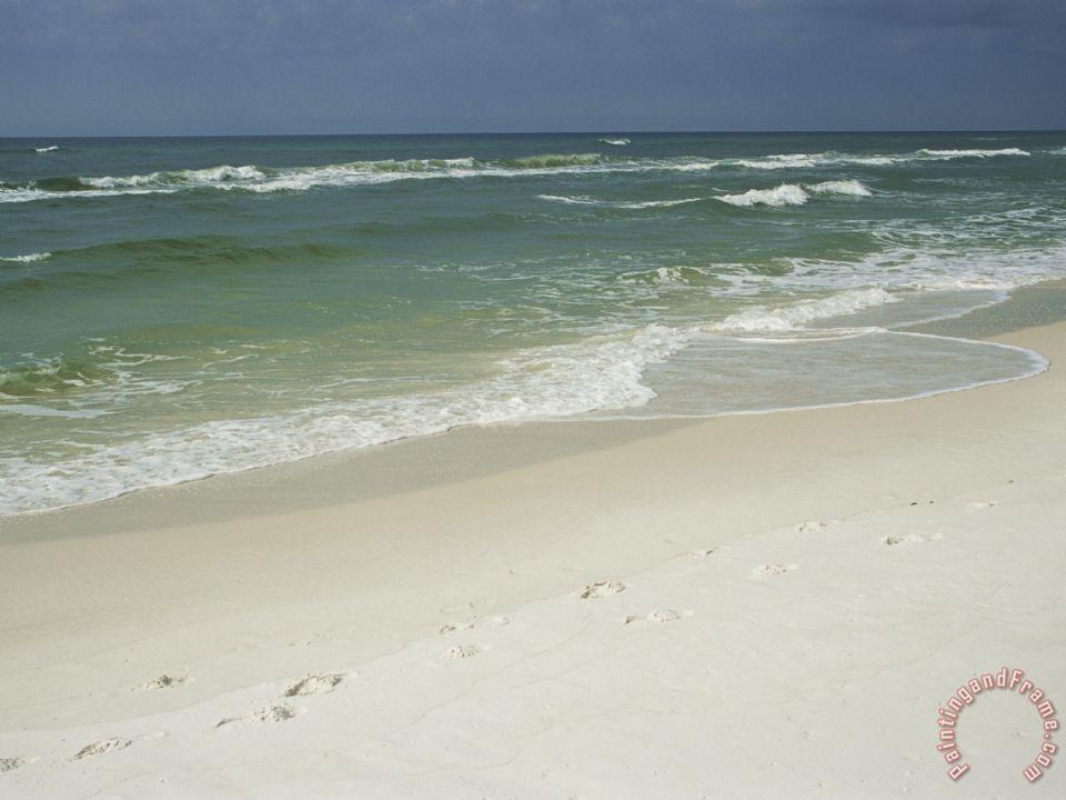 raymond gehman footprints along a sandy beach with gentle surf