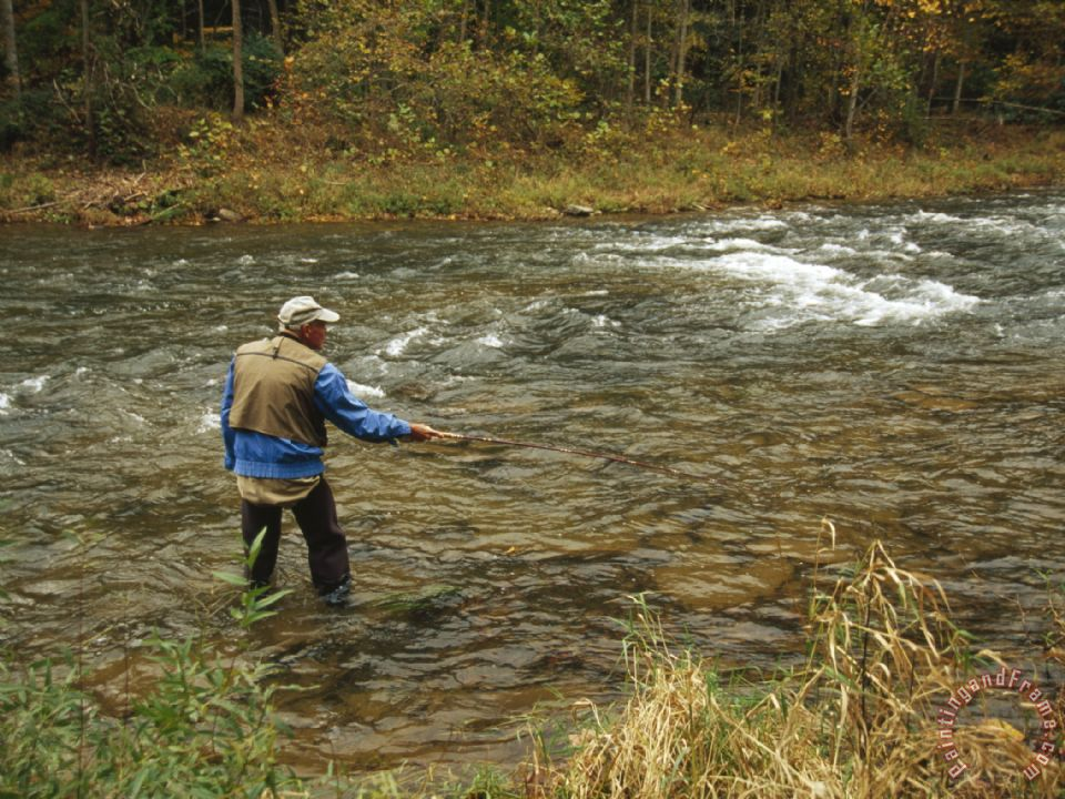 Raymond gehman man fly fishing in a swift moving river for Swift river fly fishing