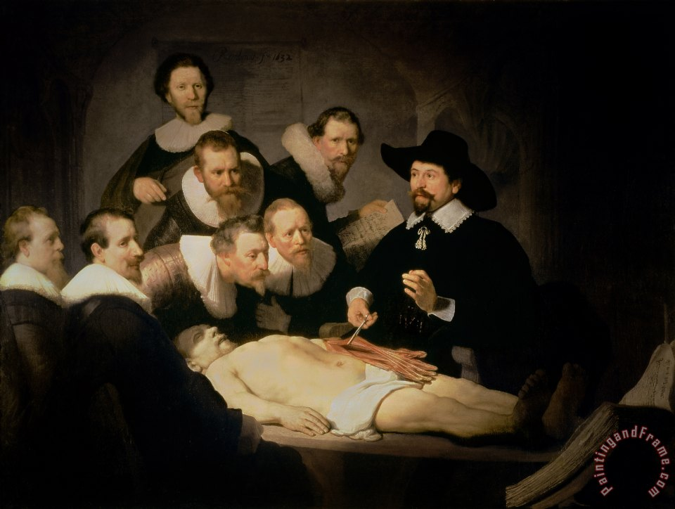 The Anatomy Lesson of Doctor Nicolaes Tulp painting - Rembrandt Harmenszoon van Rijn The Anatomy Lesson of Doctor Nicolaes Tulp Art Print