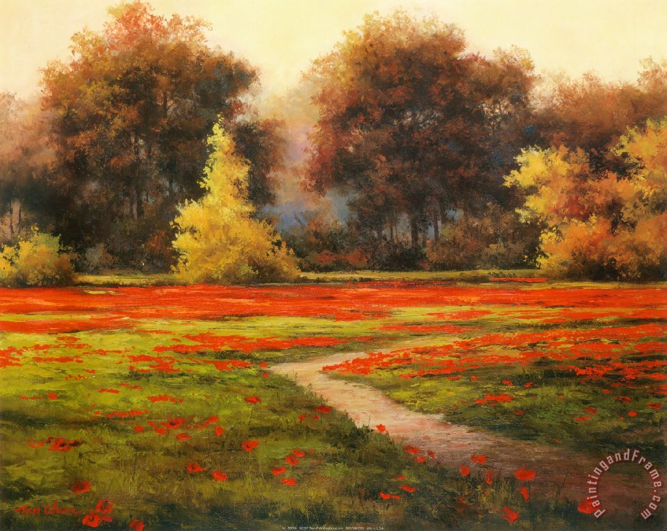 T. C. Chiu Poppy Meadows I Art Painting