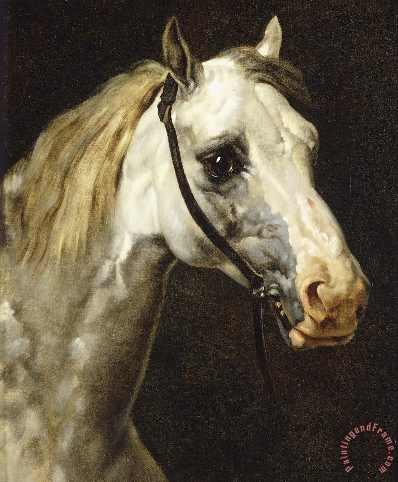 Head of a Piebald Horse painting - Theodore Gericault Head of a Piebald Horse Art Print