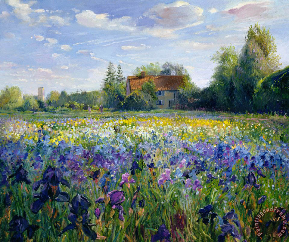 Timothy Easton Evening at the Iris Field Art Print
