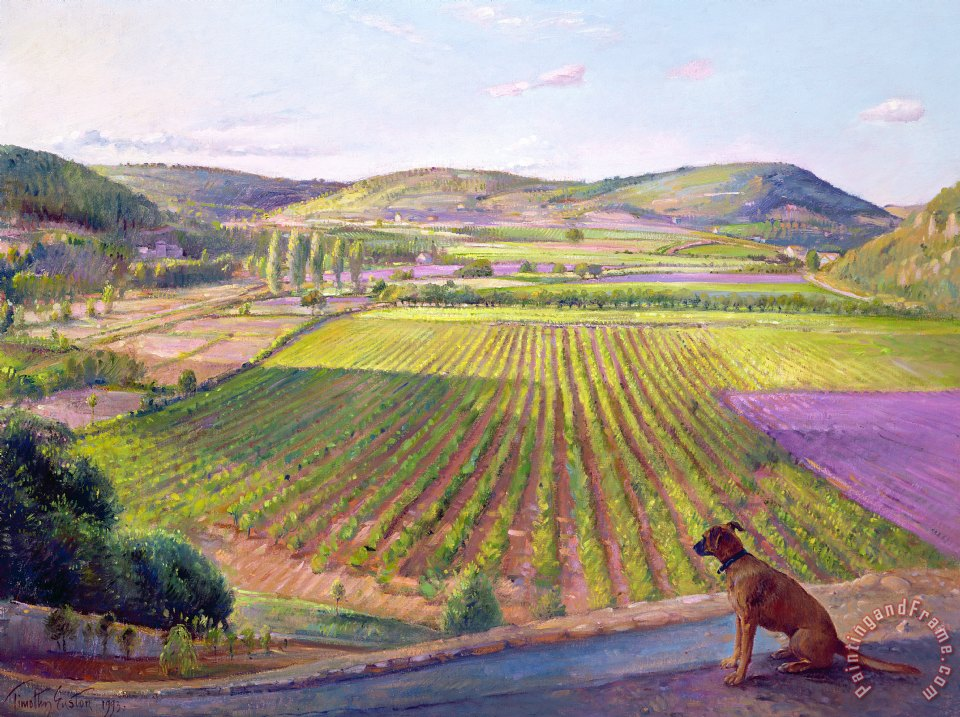 Timothy Easton Watching From The Walls Old Provence Art Painting