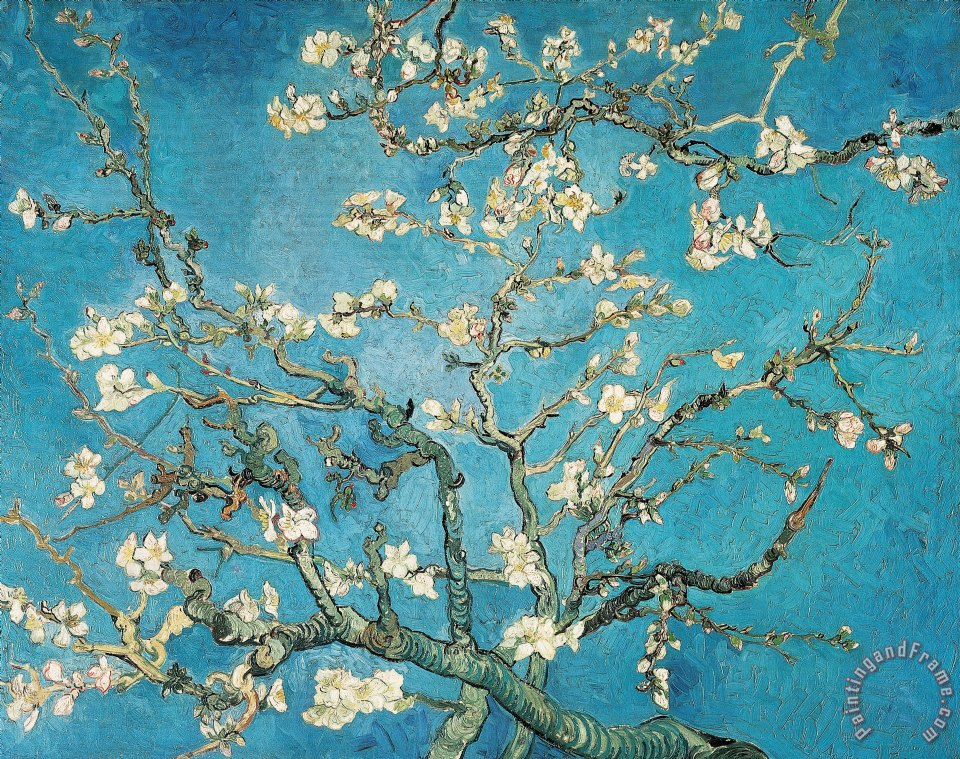 Almond Branches In Bloom painting - Vincent van Gogh Almond Branches In Bloom Art Print