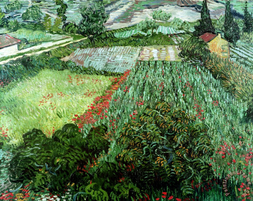 Vincent Van Gogh Field with Poppies Art Painting