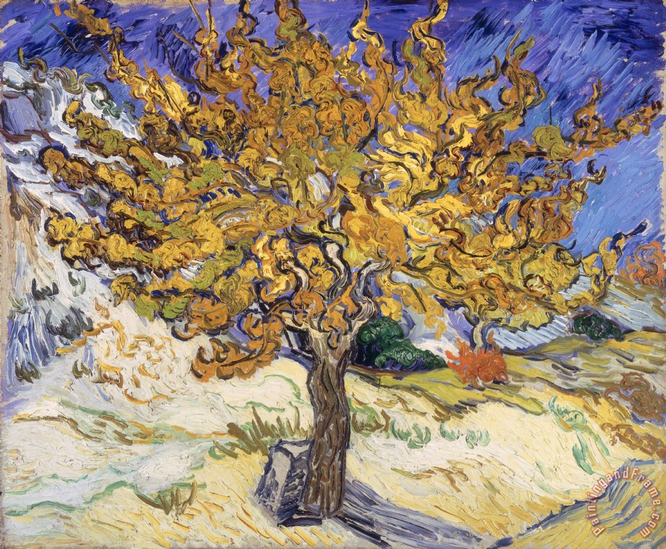 Vincent Van Gogh Mulberry Tree Painting Mulberry Tree