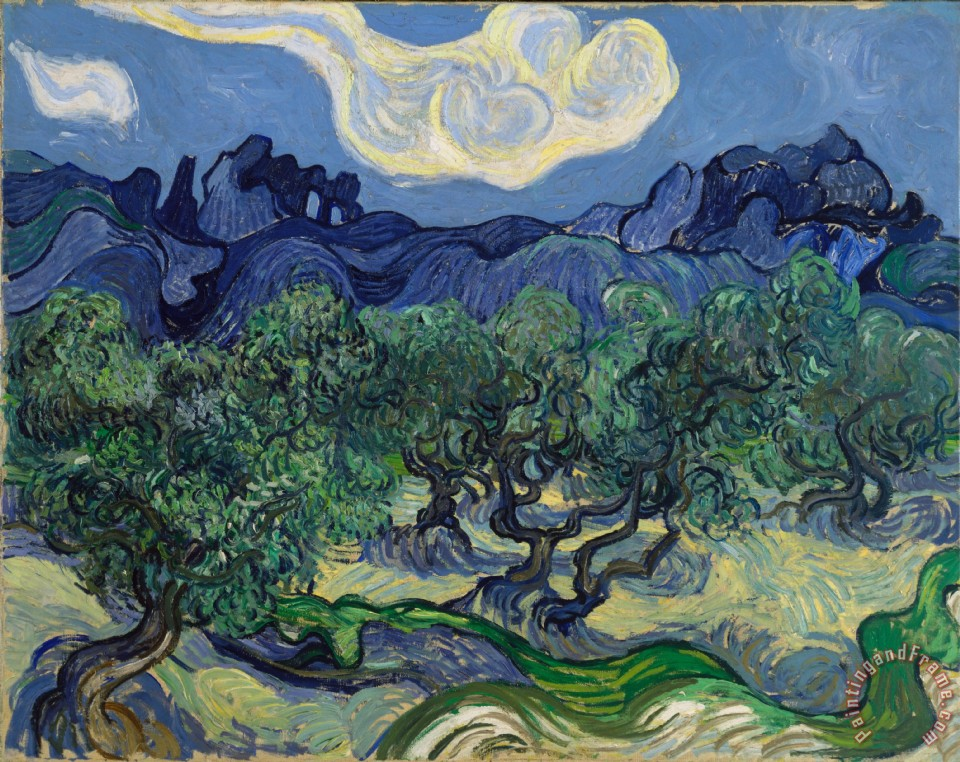 Vincent van Gogh The Olive Trees Art Print