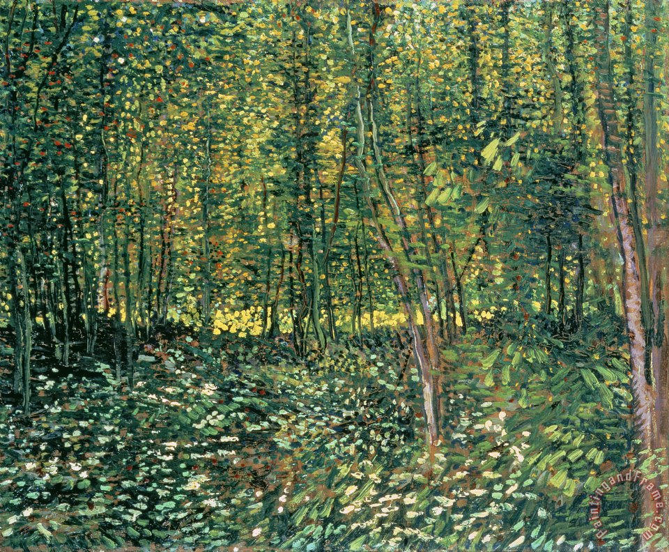 Trees and Undergrowth painting - Vincent van Gogh Trees and Undergrowth Art Print