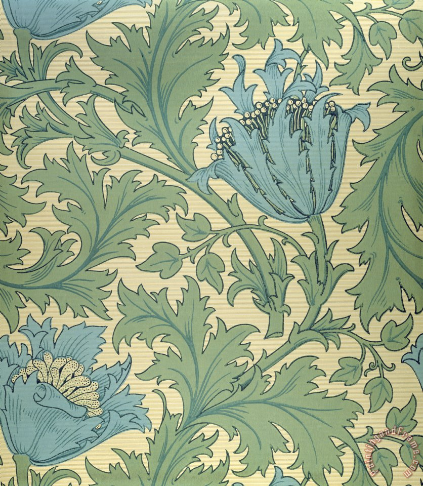 William Morris Anemone Design Painting Anemone Design