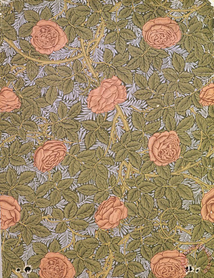 Rose 93 Wallpaper Design Painting